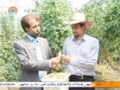 [22 June 2014] Special Report - خصوصی رپورٹ - Agricultural Expert and Jobs Opportunities - Urdu