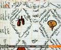 [Short Documentary] شفا   Shafa - 08 Oct 2014 - Urdu