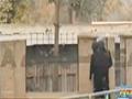 [News Clip] Firing, Blasts In Army Public School Peshawar Attack Taliban - 16 Dec 2014 - Urdu