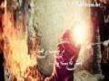 نماهنگ گلبرگ کبود با صدای دلنشین علی فانی - Farsi