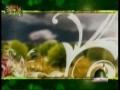 SPECIAL! Hafta-e-Wahdat - Week of Muslim Unity - 2009 Documentary - Part 2- Urdu
