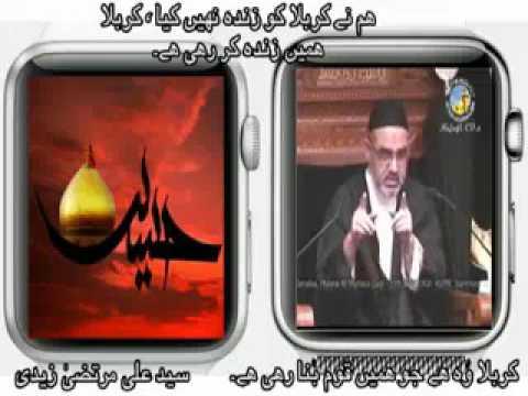 [Clip]Ham Nay Karbala Ko Zinda Nahi Kia Karbala Nay Hamian Zinda Kia Hai - Molana syed Ali Murtaza Zaidi Urdu