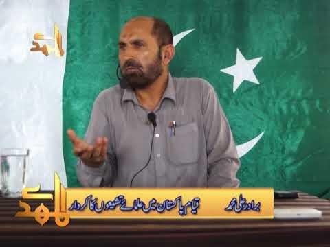 Qayame Pakistan Main Ulma Tashaion Ka Kirdar   Brother Ali Muhammad - Urdu
