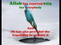(Must Watch) Rizq by Allah for Everyone - All Languages