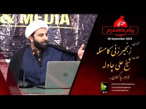 [Clip] زنجیر زنی کا مسئلہ Zanjeer Zani Ka Masla   Shaykh Ali Chawla   Urdu