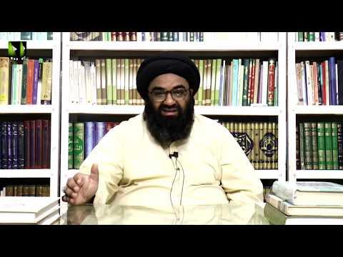 [4] Tafsir Surah Munafiqoon Or Munafiq Ke Pehchan   H.I Kazim Abbas Naqvi   Mah-e-Ramzaan 1441 - Urdu