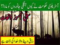 Story | سبق آموز واقعہ رزق دینے والا خدا کی ذات ہے | Urdu