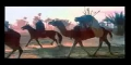 The Witness of Karbala - The Fateful Day - Part 9 of 9 - English