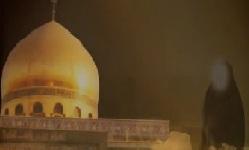 Zainab (s.a) the Commander of Patience - Haaj Mahdi Samavati - Farsi sub English