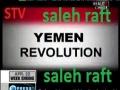NAKSA Day & Saudi Crime List - World News Summary - 5 June 2011 - English