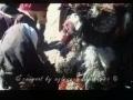 Movie - Kerbela Sahidi - 02 of 11 - Turkish