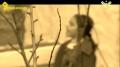Em Yaser AL-Mousawi (HD) | أم ياسر الموسوي - وثائقي - Arabic