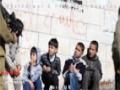 Poetry : The dream of a Palestinian - Dr. Farhan Ali Jafferi - English