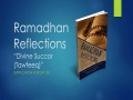 [Supplication For Day 22] Ramadhan Reflections - Divine Succour (Tawfeeq) - Sh. Saleem Bhimji - English
